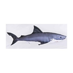 Haai 200 cm