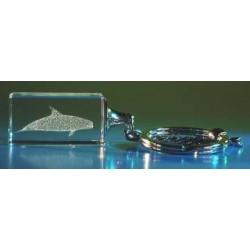 Sleutelhanger glas met dolfijn